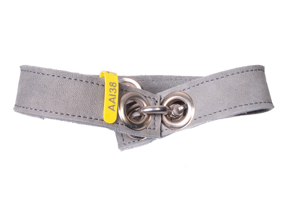 Halsband Aai38 M