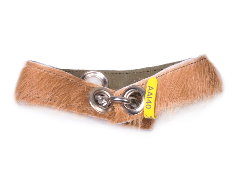 Halsband Aai40 M